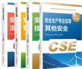 2020年全国注册安全工程师执业资格考试指定教材(其他安全)